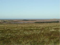View over Hanstholm Reservation towards the North Sea.